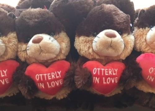 Otterly in Love Plush