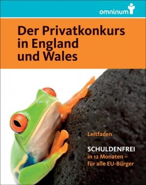 """E-Book: Schuldenfrei in 12 Monaten (""""Der Privatkonkurs in England und Wales"""")"""